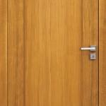 drzwi PRINCE
